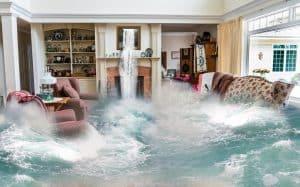 נזקי מים והצפה